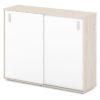 шкаф-купе для документов S-69 каркас дуб верцаска светлый, белые дверки