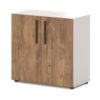 Шкаф T-621 для документов таксония медовая